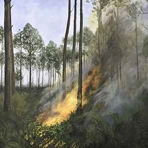 artwork showing forest fire by Anne Magratten