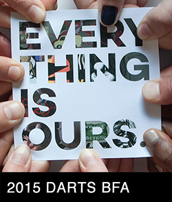DARTS BFA 2015