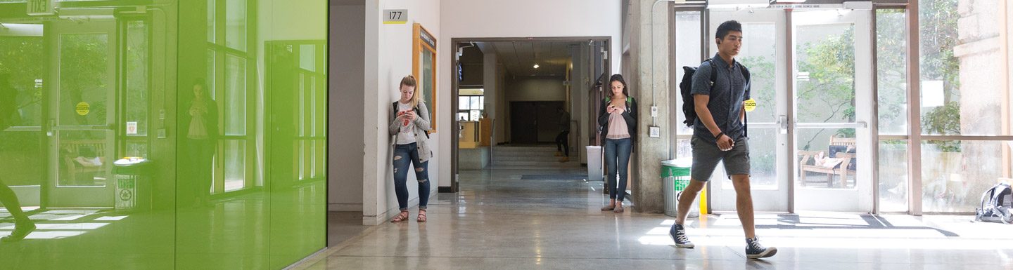 students in hallway in Lawrence Hall