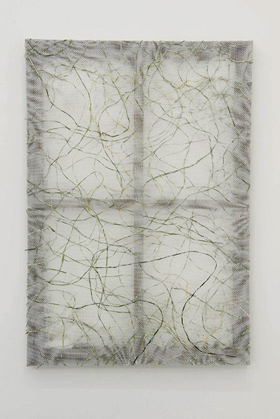 Net, 2015. Beargrass, mesh textile, composite wood. 35 x 24 x 1.5 inches